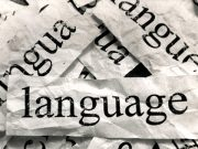 Linguas e Literaturas Estrangeiras